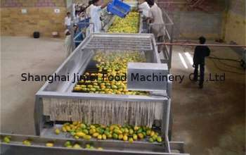 pl4694425-20000bph_fruit_juice_tea_beverage_drink_automatic_bottle_filling_machine_production_line